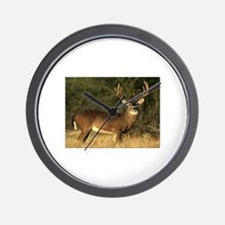 Beautiful Buck Wall Clock