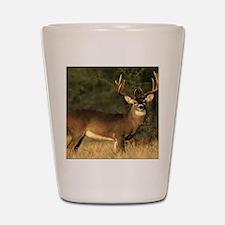 Beautiful Buck Shot Glass