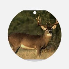 Beautiful Buck Round Ornament