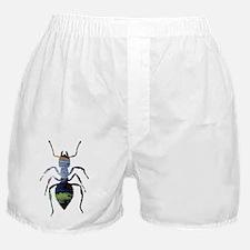 Unique Silhouette Boxer Shorts