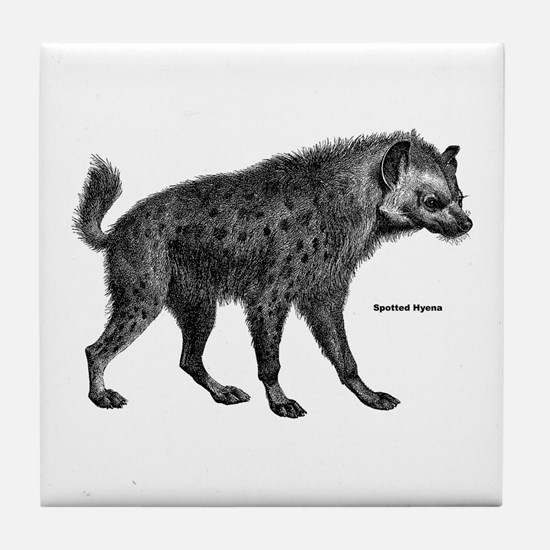 Spotted Hyena Tile Coaster
