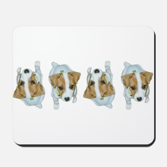 Jack Russell Puppies! Mousepad