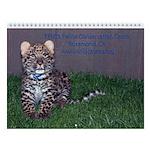 Baby Wild Cats Wall Calendar