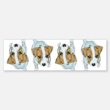 Jack Russell Puppies! Bumper Bumper Bumper Sticker