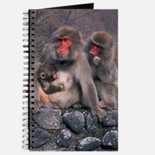 SNOW MONKEY FAMILY - Journal