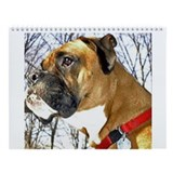 Boxers dogs Wall Calendars