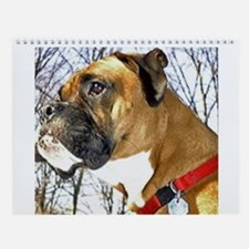 Jackson the Boxer Wall Calendar 1