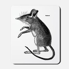 Rodent Mouse Mousepad