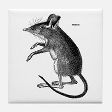 Rodent Mouse Tile Coaster