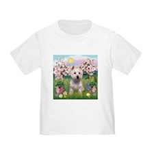 Blossoms & West Highland Terr T