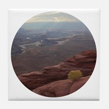 Funny Red rock canyon state park Tile Coaster
