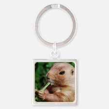 Prairie Dog Square Keychain Keychains
