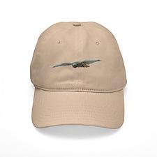 Raptor Flight Baseball Cap