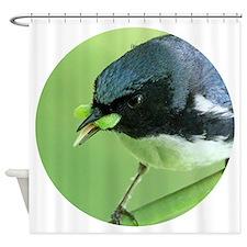 Funny Feed birds Shower Curtain