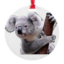 Koala Bear holding onto a tree Ornament