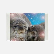 Mother and baby seal Magnets