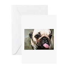 Cute Pug photo Greeting Card