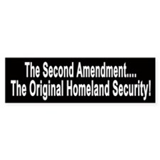 The Second Amendment Original Homeland Security