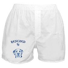 Saint Bernard Boxer Shorts