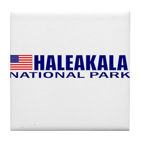 Haleakala National Park Tile Coaster
