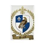 BRIARD Family Crest Rectangle Magnet