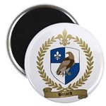 BRIARD Family Crest Magnet