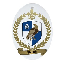 BRIARD Family Crest Oval Ornament