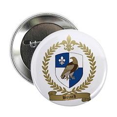BRIARD Family Crest Button