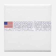 Carlsbad Caverns National Par Tile Coaster