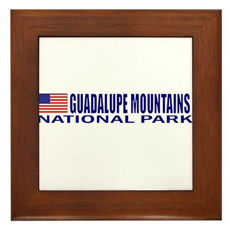 Guadalupe Mountains National Framed Tile