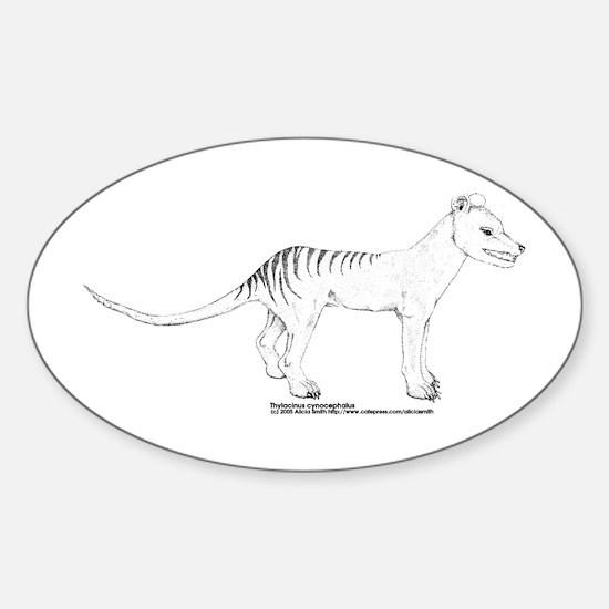 Standing Thylacine Oval Decal