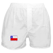 Valparaiso, Chile Boxer Shorts