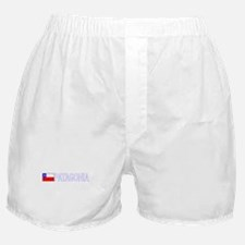 Patagonia, Chile Boxer Shorts