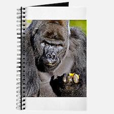 GORILLAS LUNCH Journal