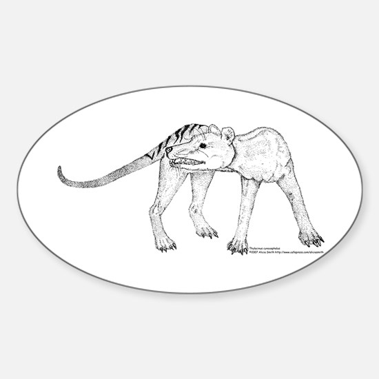 Thylacine Turning Oval Decal