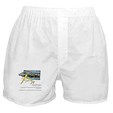 California Thunderstorms Boxer Shorts