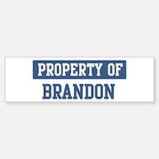 Property of BRANDON Bumper Car Car Sticker