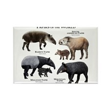 Tapirs of the World Rectangle Magnet