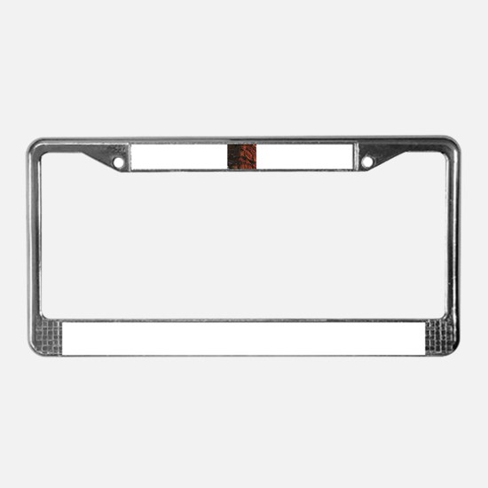 dry red rock License Plate Frame