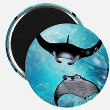 Awesome swimming manta Magnets