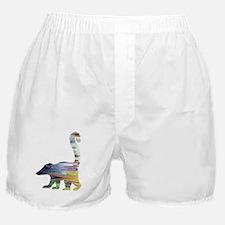 Cool Nursery Boxer Shorts