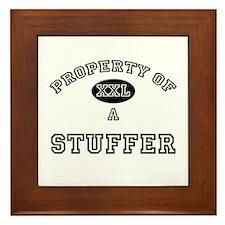Property of a Stuffer Framed Tile