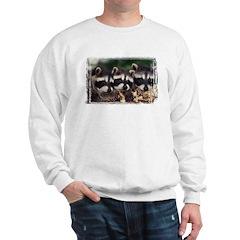 3 Raccoons Sweatshirt