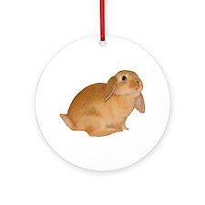 """bunny 5"" Ornament (Round)"