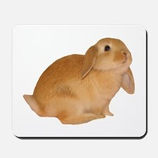 """bunny 5"" Mousepad"