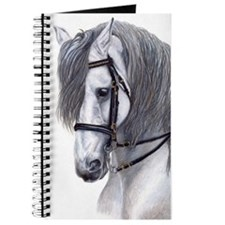 Andalusian Journal