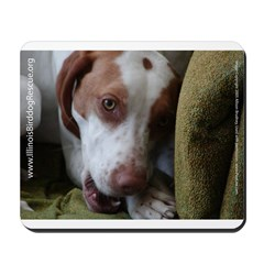 Couch Puppy IBR Mousepad