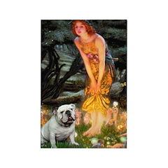 Fairies / English Bulldog Rectangle Magnet (10 pac