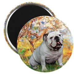 Spring/ English Bulldog (#9) Magnet