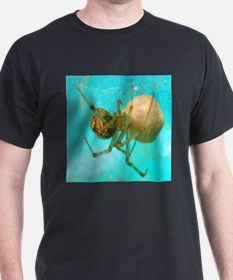spider protecting egg T-Shirt